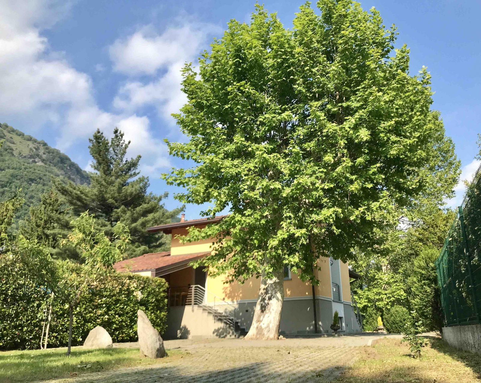 Nuova villa singola con giardino in vendita a Cernobbio
