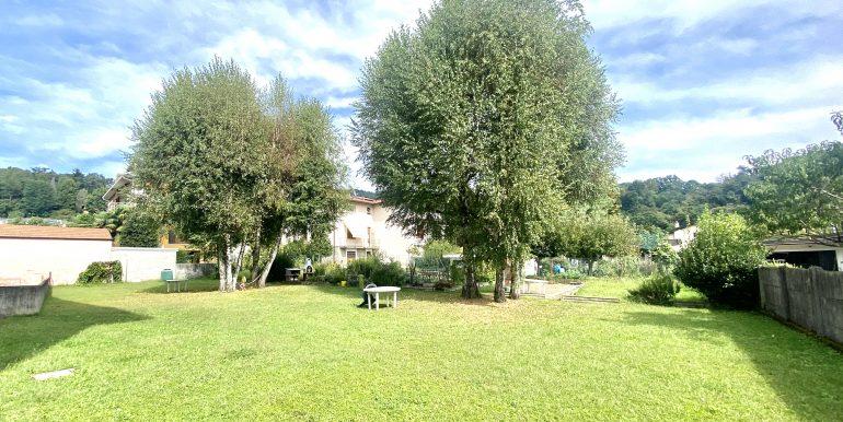 trilocale-albate-giardino-1