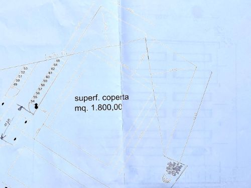 Vendesi lotto di terreno a Rodero - 15